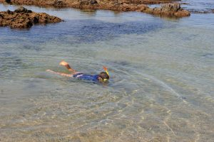 Snorkelling for Whiting, Bream and other reef fish