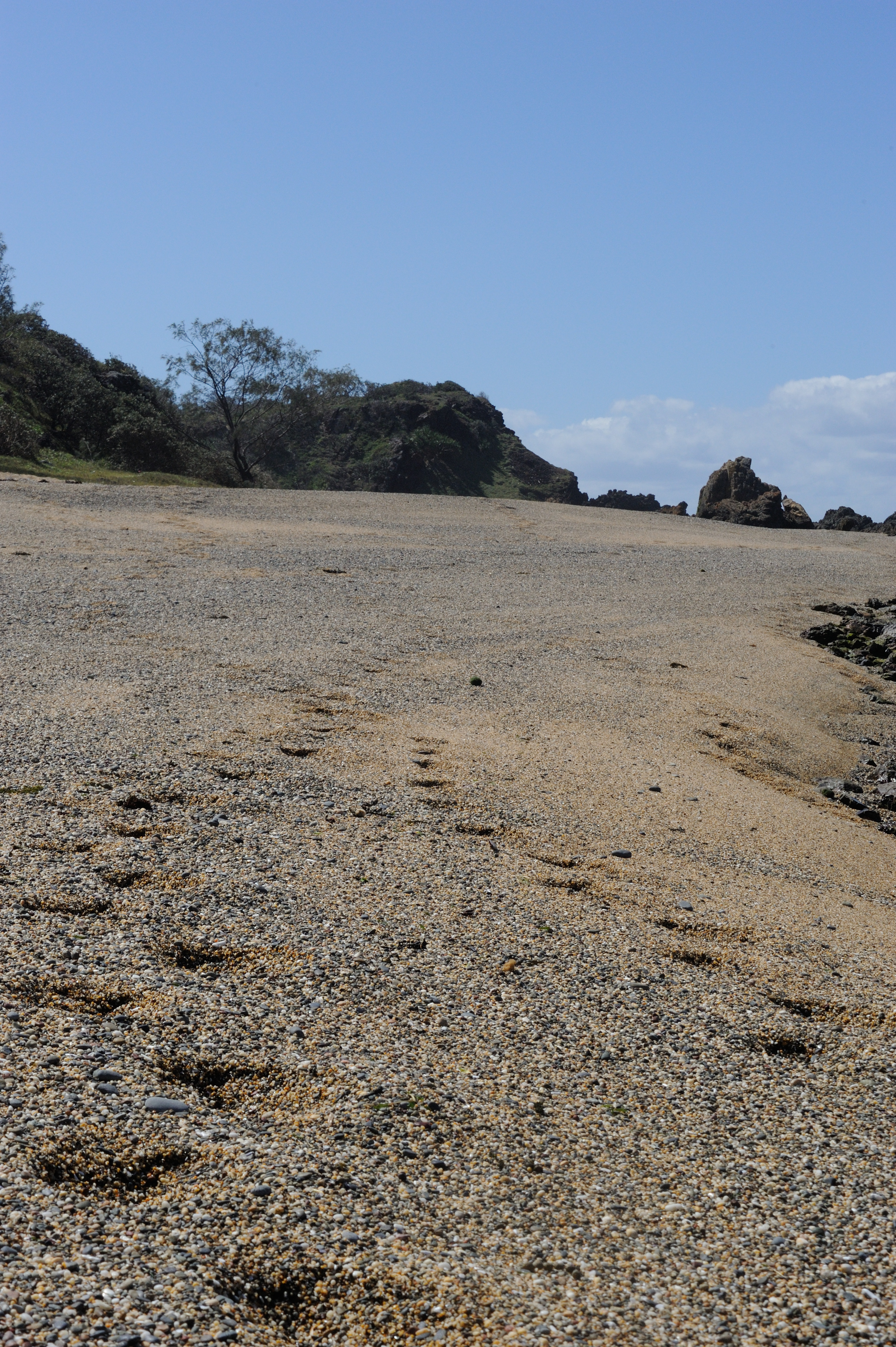 Pebble Beach - Sandon NSW - Yuraygir NP