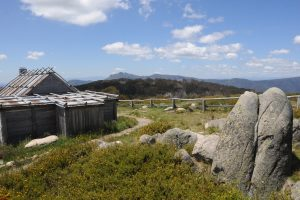 View at Craigs Hut - Alpine National Park