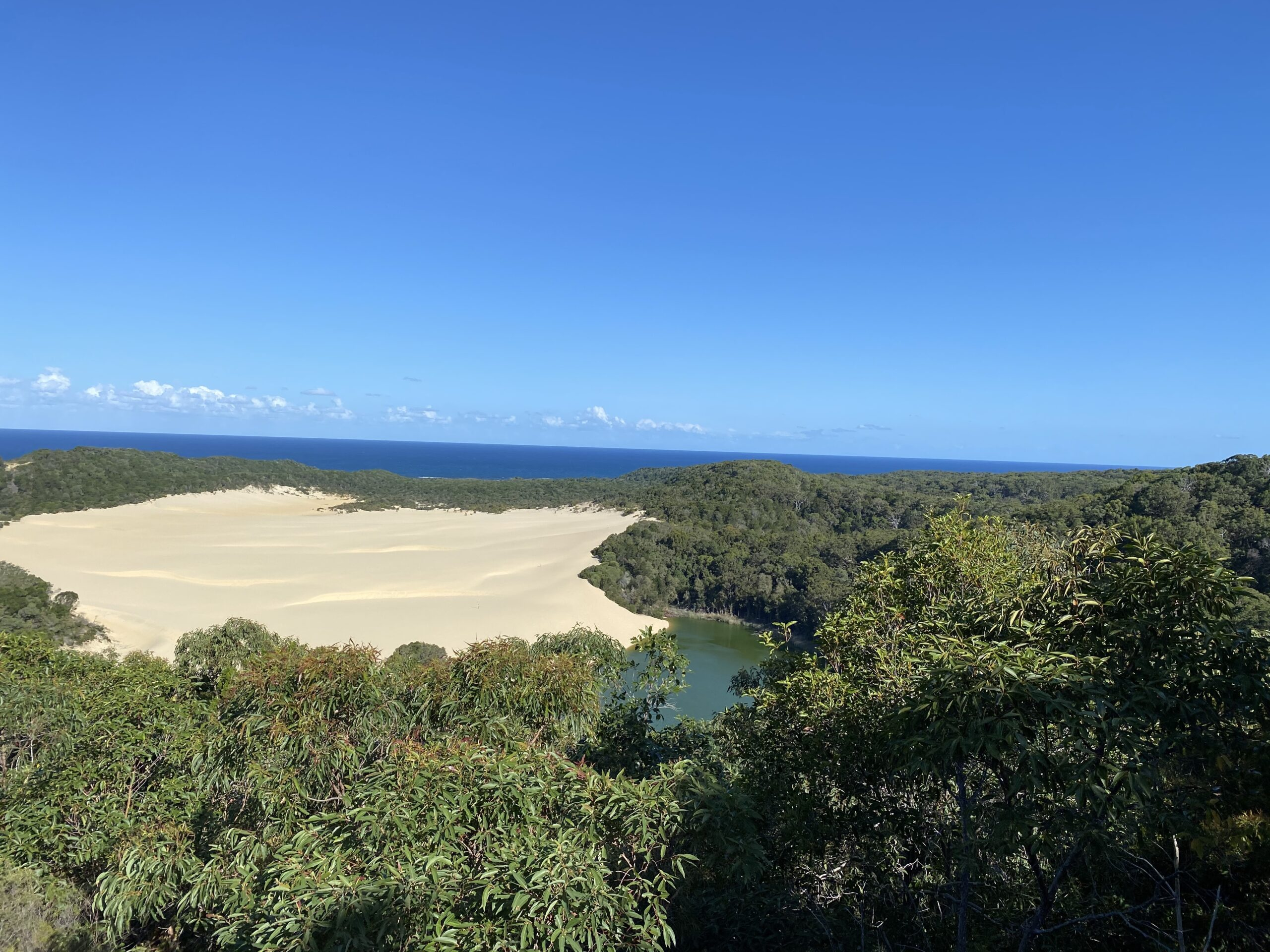 View of Lake Wabby from Lookout