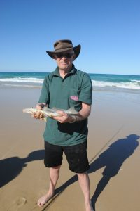 Stonker whiting - Beach fishing at Double Island Point